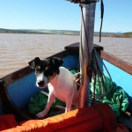 Sailing the Vlei with Pixel